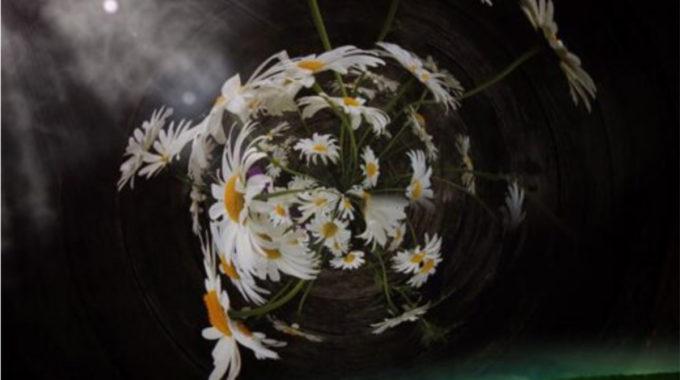 Emerging Yourself In Spiritual Practice